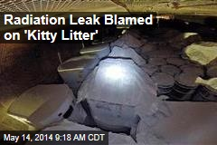 Radiation Leak Blamed on 'Kitty Litter'