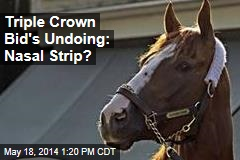 Trainer: Chrome Might Abandon Triple Crown Bid