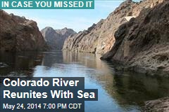 Colorado River Reunites With Sea