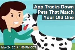 App Tracks Down Pets That Match Your Old One