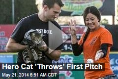 Hero Cat 'Throws' First Pitch
