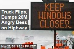 Truck Flips, Dumps 20M Angry Bees on Highway