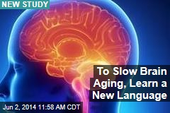To Slow Brain Aging, Learn a New Language