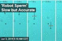 'Robot Sperm' Slow But Accurate