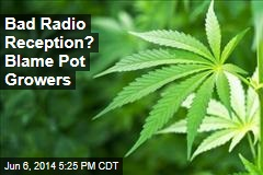 Bad Radio Reception? Blame Pot Growers