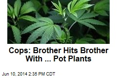 Cops: Brother Hits Brother With ... Pot Plants