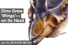 Dino Grew 'Wings'— on Its Head