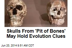 Skulls From 'Pit of Bones' May Hold Evolution Clues
