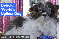 Behold: 'World's Ugliest Dog'