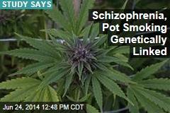 Schizophrenia, Pot Smoking Genetically Linked