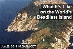 What It's Like on the World's Deadliest Island