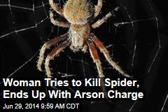Woman Tries to Kill Spider, Ends Up With Arson Charge
