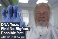 DNA Tests Find No Bigfoot, Possible Yeti
