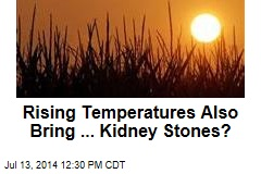 Rising Temperatures Also Bring ... Kidney Stones?