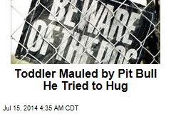 Toddler Mauled by Pit Bull He Tried to Hug