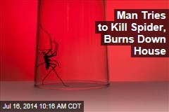 Man Tries to Kill Spider, Burns Down House