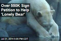 Over 550K Sign Petition to Help 'Lonely Bear'