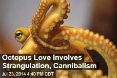 In Mating, Female Octopus Has Lethal Final Move