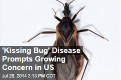 'Kissing Bug' Disease Prompts Growing Concern in US