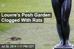 Louvre's Posh Garden Clogged With Rats