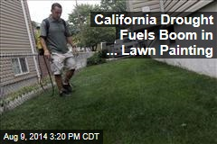 California Drought Fuels Boom in ... Lawn Painting