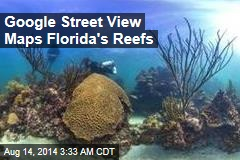 Google Street View Maps Florida's Reefs