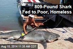 809-Pound Shark Fed to Poor, Homeless