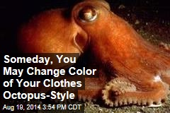 Someday, You May Change Color of Your Clothes Octopus-Style