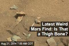 Mysterious Mars Find Looks Like a Bone