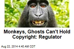 Monkeys, Ghosts Can't Hold Copyright: Regulator