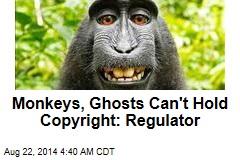 Monkeys, Ghosts Can't Hold Copyright: Regulator