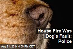 House Fire Was Dog's Fault: Police