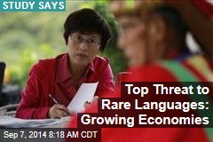 Top Threat to Rare Languages: Growing Economies