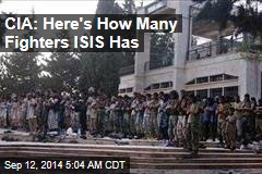 CIA: ISIS Numbers Have Tripled
