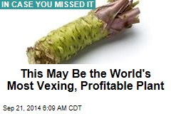 This May Be the World's Most Vexing, Profitable Plant