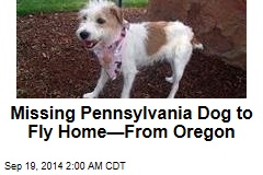 Missing Pennsylvania Dog To Fly Home—From Oregon