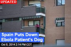 Spain to Kill Ebola Patient's Dog