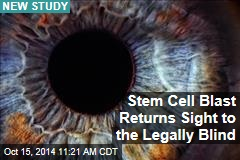 Stem Cell Blast Returns Sight to the Legally Blind