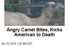 Angry Camel Kills Monkey Sanctuary Founder