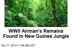 WWII Airman's Remains Found in New Guinea Jungle