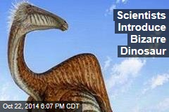 Scientists Introduce Bizarre Dinosaur