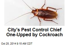 City's Pest Control Chief One-Upped by Cockroach