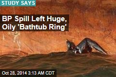 BP Spill Left Huge, Oily 'Bathtub Ring'
