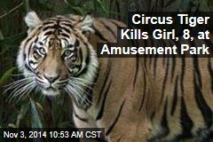 Circus Tiger Kills Girl, 8, at Amusement Park