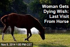 Woman Gets Dying Wish: Last Visit From Horse