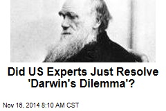 US scientists may have resolved 'Darwin's dilemma'