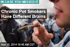 Chronic Pot Smokers Have Different Brains, Lower IQs
