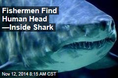 Fishermen Find Human Head —Inside Shark