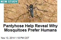 Pantyhose Help Reveal Why Mosquitoes Prefer Humans