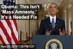 Obama: This Isn't 'Mass Amnesty,' It's a Needed Fix
